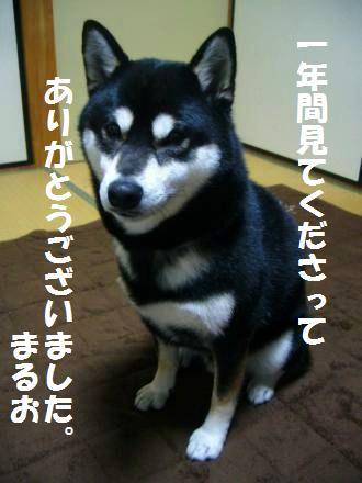 006_convert_20121231172203.jpg