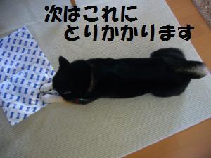010_convert_20121229185056.jpg