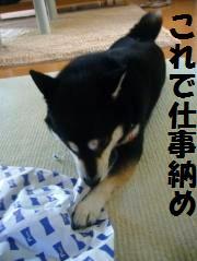 011_convert_20121229185258.jpg