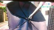 十和子様日傘