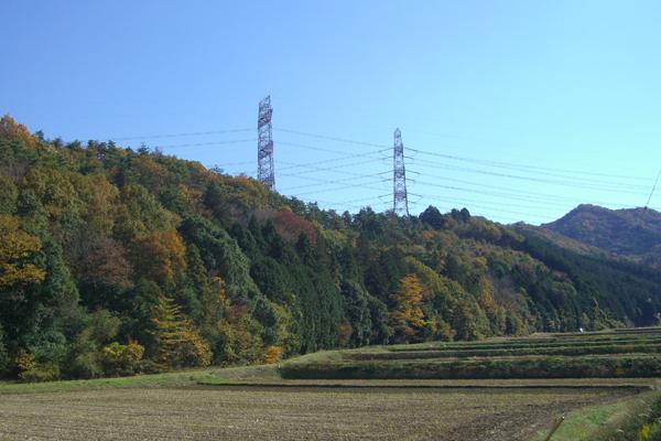 20121114-12.jpg