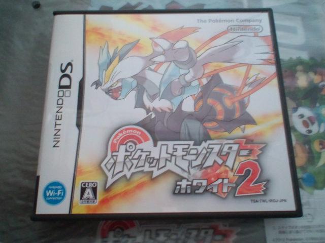 pokemonW2 (2)