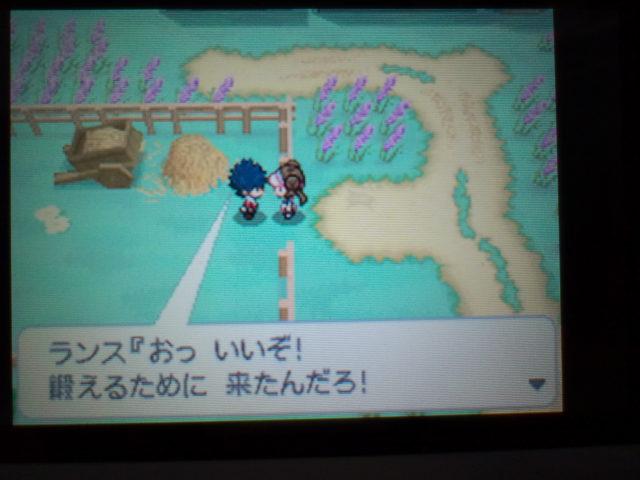 pokemonW2 (1)