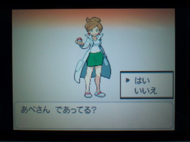 pokemonW2 (3)