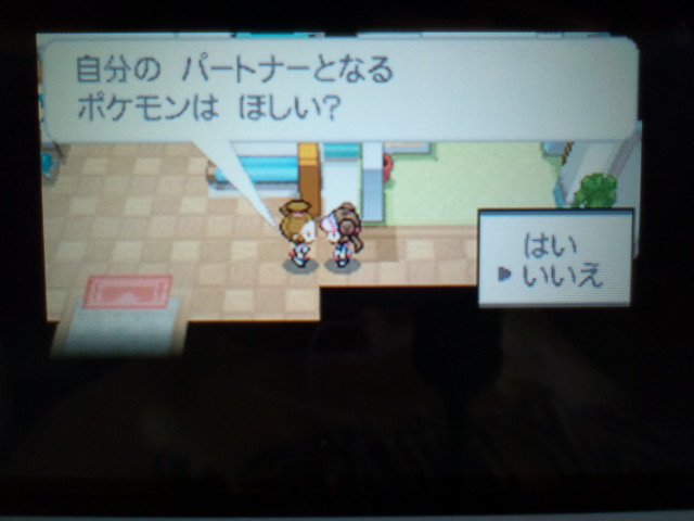 pokemonW2 (4)