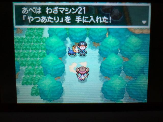 pokemonW2 (6)