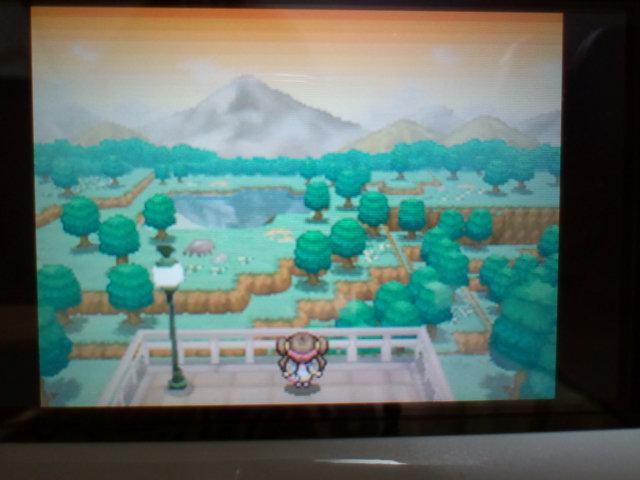 pokemonW2 (7)