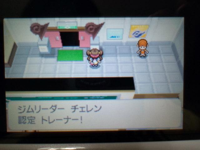 pokemonW2 (8)
