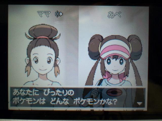 pokemonW2 (13)