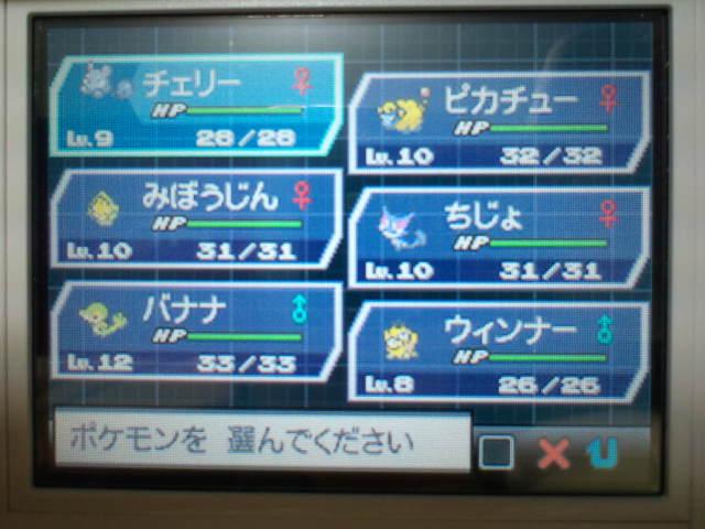 pokemonW2 (14)