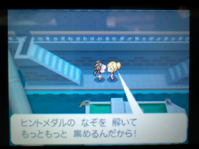 pokemonW2 (17)
