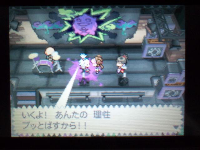 pokemonW2 (21)