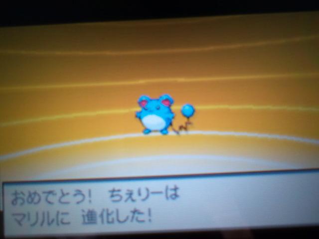 pokemonW2 (30)