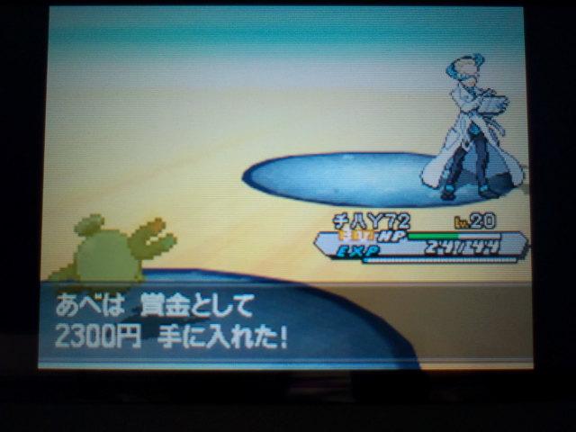 pokemonW2 (37)