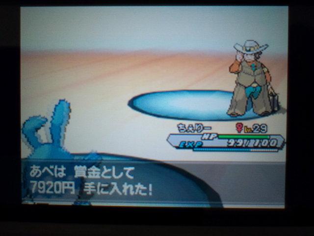 pokemonW2 (62)