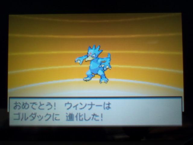 pokemonW2 (72)