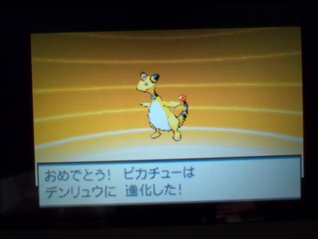 pokemonW2 (74)