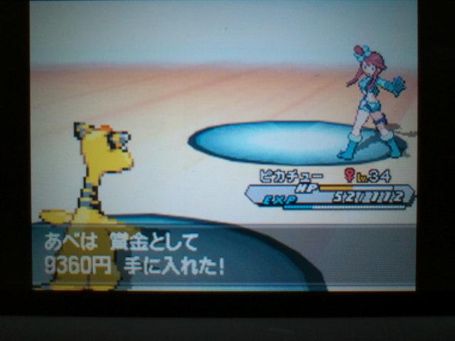 pokemonW2 (75)