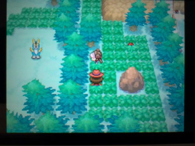pokemonW2 (85)