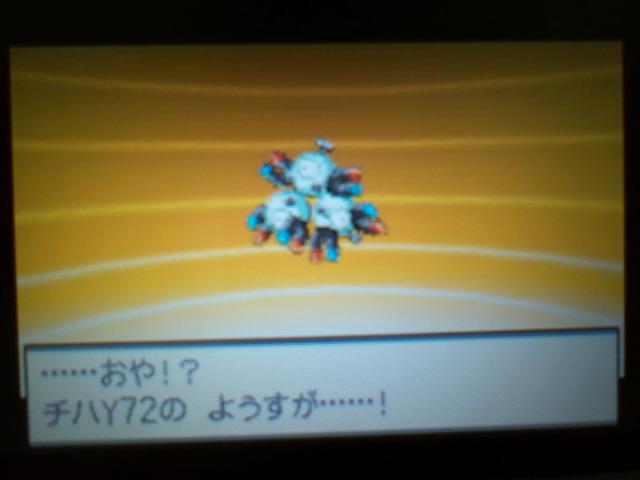pokemonW2 (91)