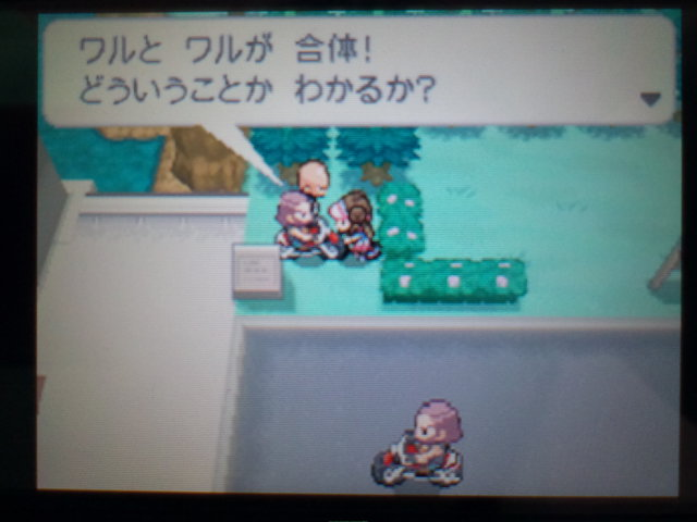 pokemonW2 (94)
