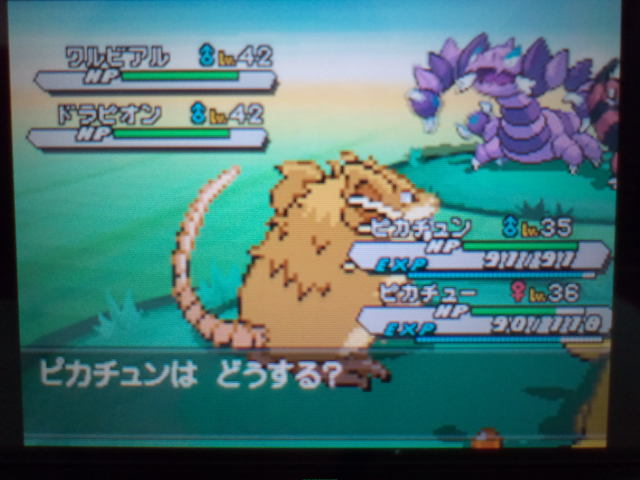 pokemonW2 (95)