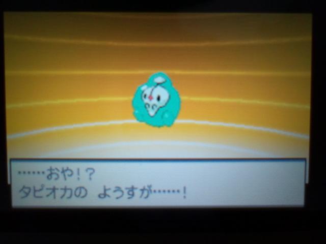 pokemonW2 (97)