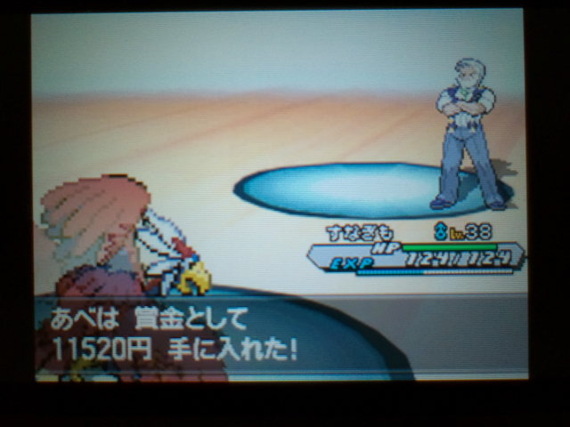 pokemonW2 (104)