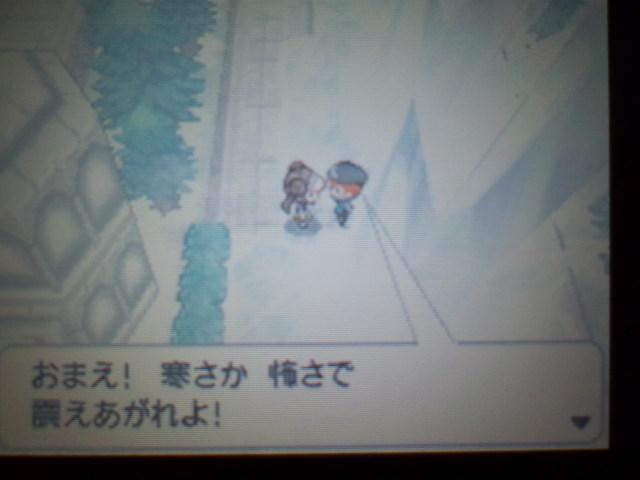 pokemonW2 (105)