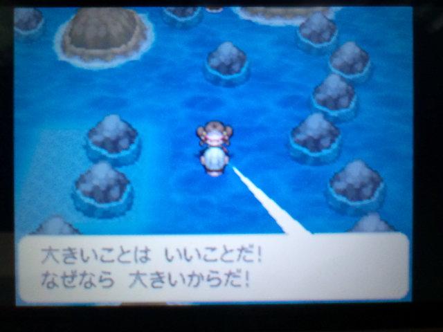 pokemonW2 (113)