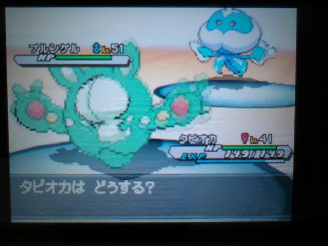 pokemonW2 (114)