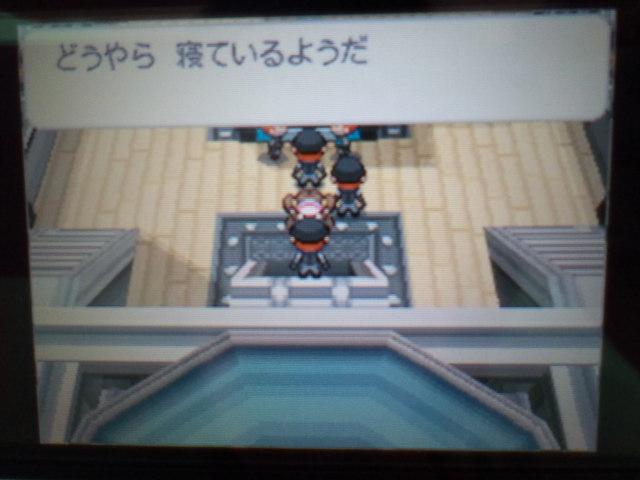 pokemonW2 (120)