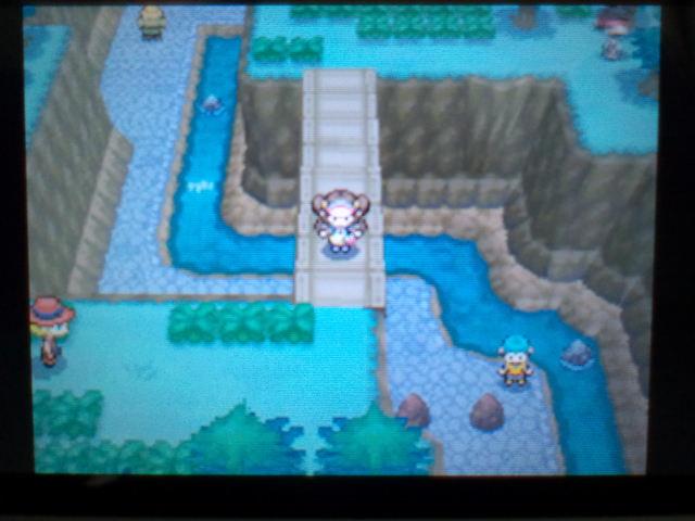 pokemonW2 (148)