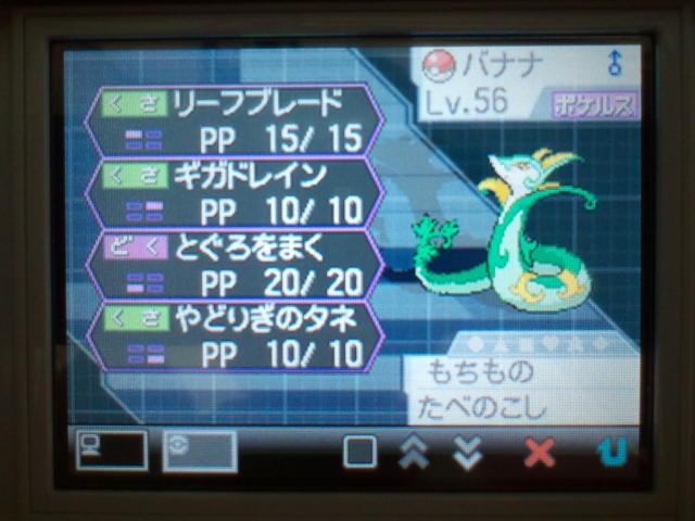 pokemonW2 (152)
