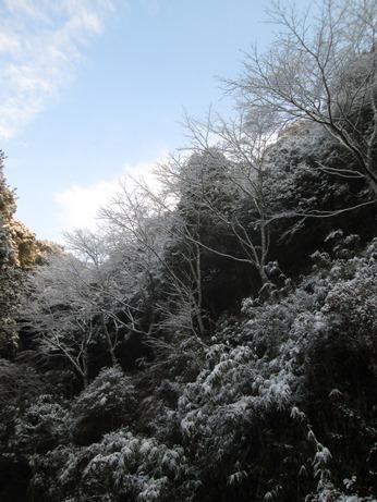 2014年1月16日 写真