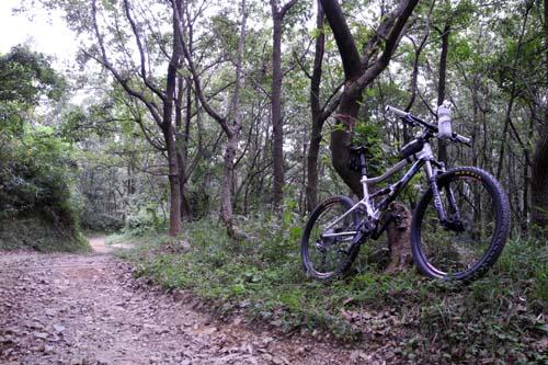 林道で休憩