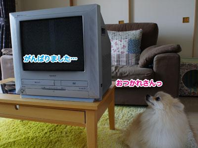 DSC05820.jpg