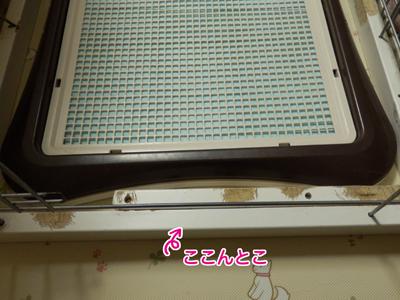 PC200566.jpg