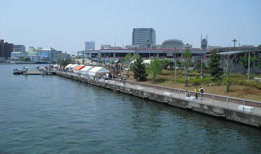 6 大阪市中央卸市場