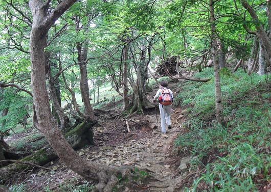 3 行者還トンネル西口から登山道
