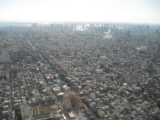 6 東京湾方面