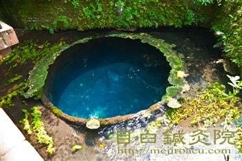 20120506柿田川公園1
