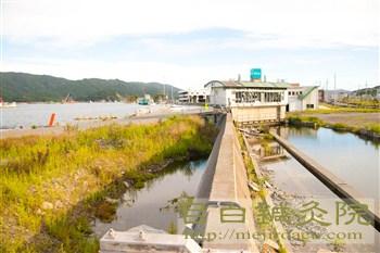 20120902大船渡漁港1