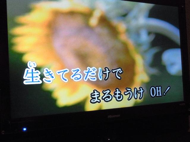 R0053879.jpg
