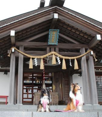 神祇神社 (7) - コピー