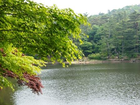 2012 5.26 修法ヶ原