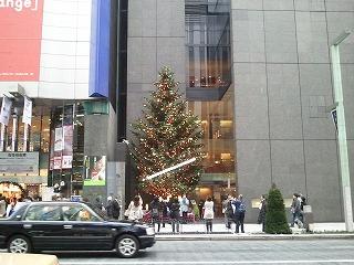2012ミキモトのクリスマスデコレーション