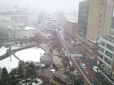 20140204雪