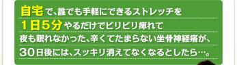 body_03-H4.jpg