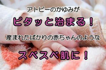 img002-H_20120515194727.jpg